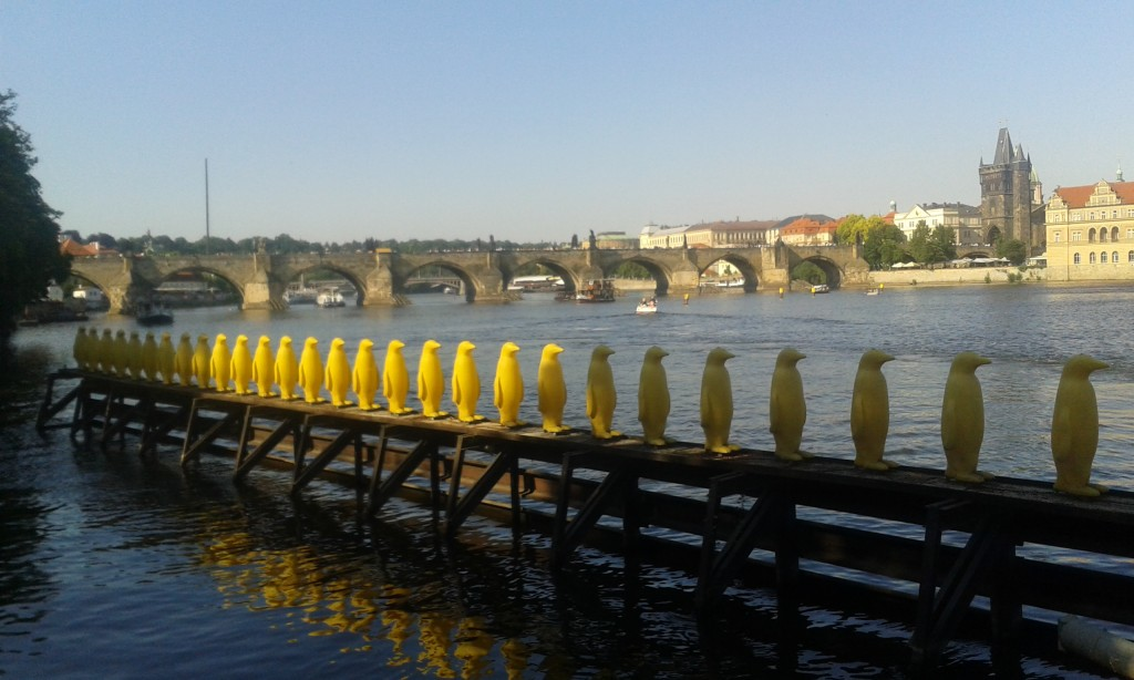 Les pingouins jaunes de la Vltava, Pont Charles, Prague, images Prague, P rague, photos Prague