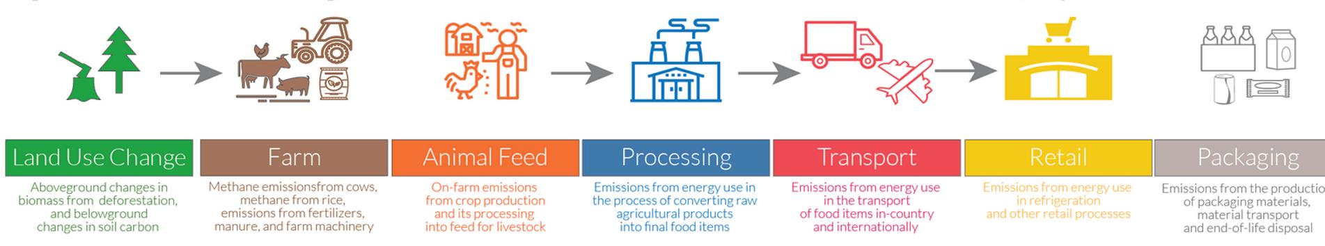 Comment réduire l'empreinte carbone de notre alimentation