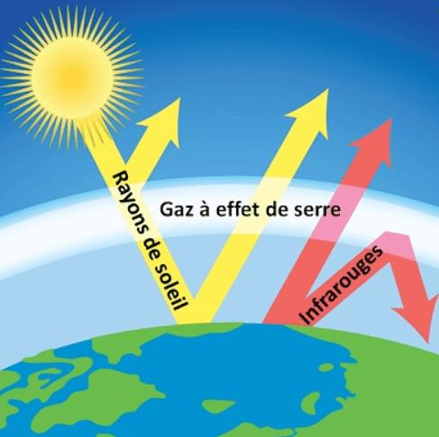Impact de la dégradation de l'environnement sur la santé